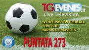 Tgevents Television Puntata 273