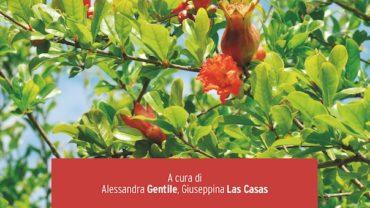 IL MELOGRANO di Alessandra Gentile e Giuseppina Las Casas