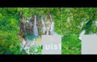 Travel Guide Isola di Ponza
