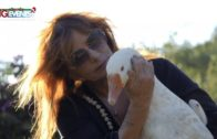 Roberta Gullifa e i suoi animali